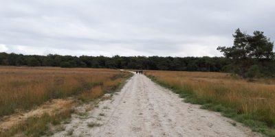 Rondje Holtingerveld