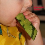 Month 4 Baby solid food – 8 to 9 months old