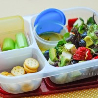 MOMables Review: Meal Plan for Kid's Lunches {Giveaway}