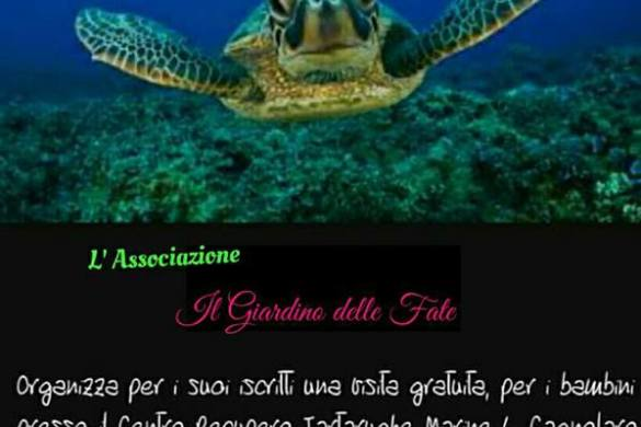 Visita-tartarughe-Pescara
