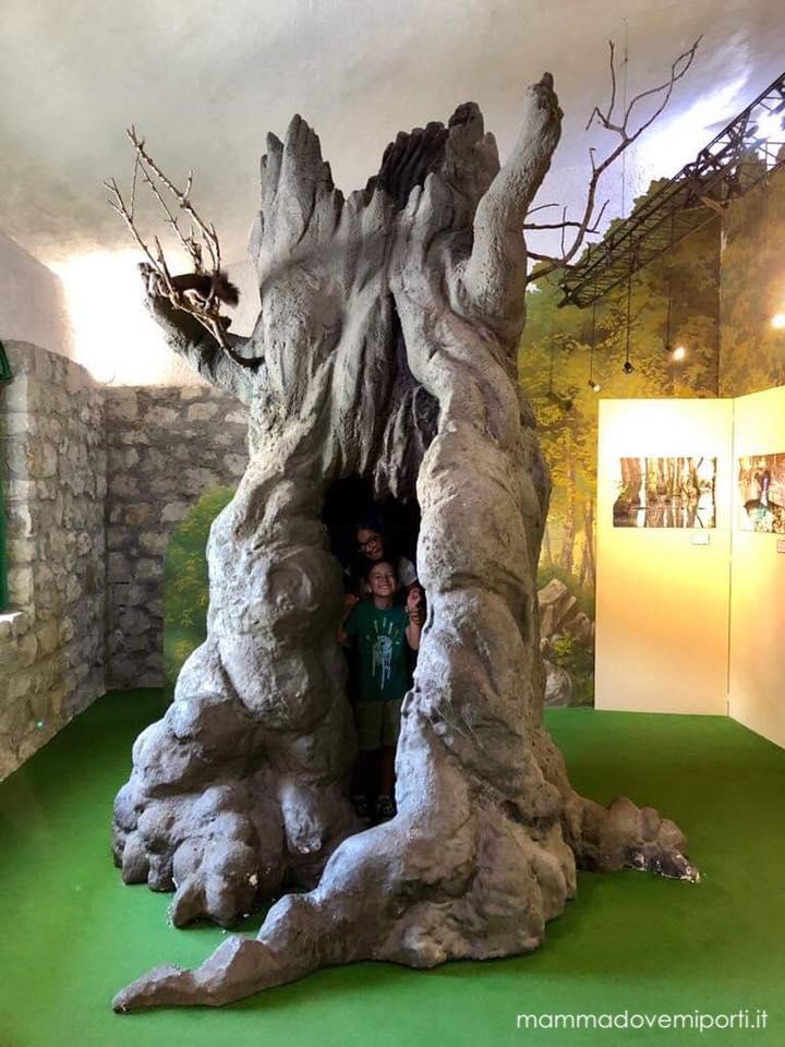 Albero-museo-del-lupo-civitella-alfedena-laquila