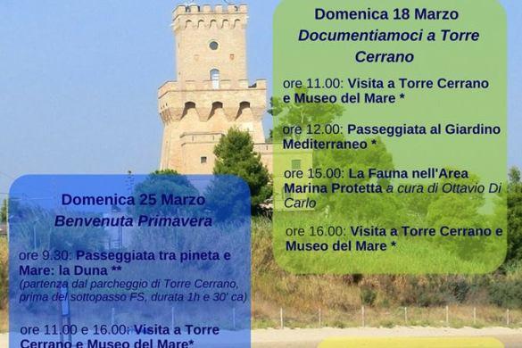 Marzo-nell-Area-Marina-Protetta-Torre-del-Cerrano-Pineto-TE