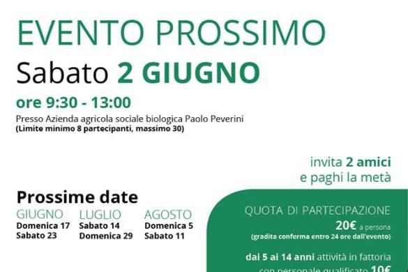 Naturiamoci - Azienda Agricola Paolo Peverini - Massa d'Albe - L'Aquila