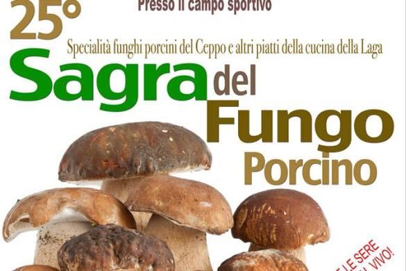 Sagra-del-Fungo-Porcino-Rocca-Santa-Maria-TE
