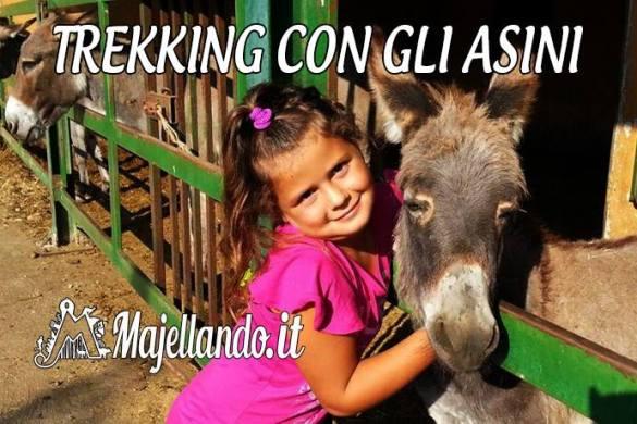 Trekking-con-gli-asini-Introdacqua-L-Aquila