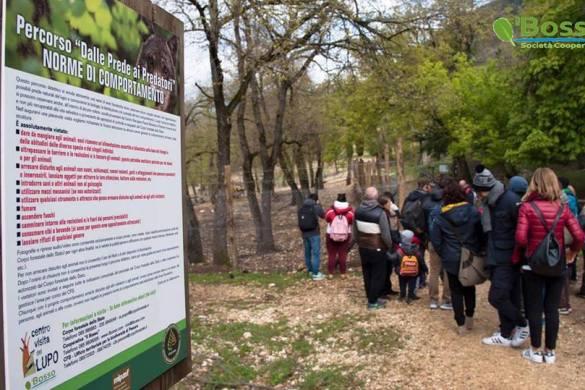 Visite-Guidate-Centro-Visita-del-Lupo-Popoli-