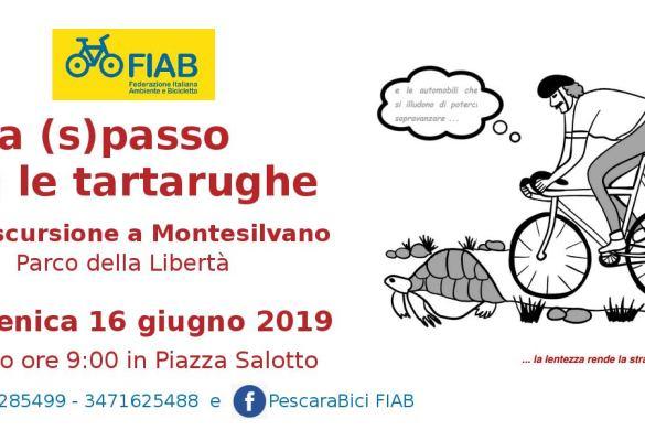 A-Spasso-con-le-Tartarughe-Pescara-Bici-Fiab-Pescara