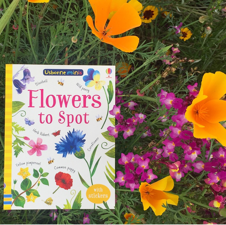 Flowers to spot book review on MammaFilz.com