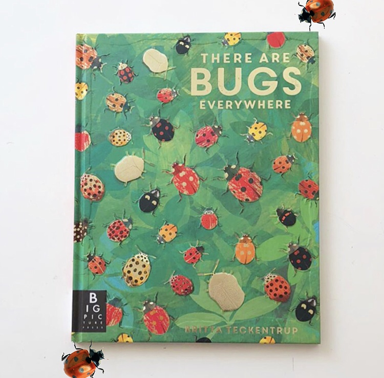 Britta Teckentrup There are bugs everywhere book review on MammaFilz.com