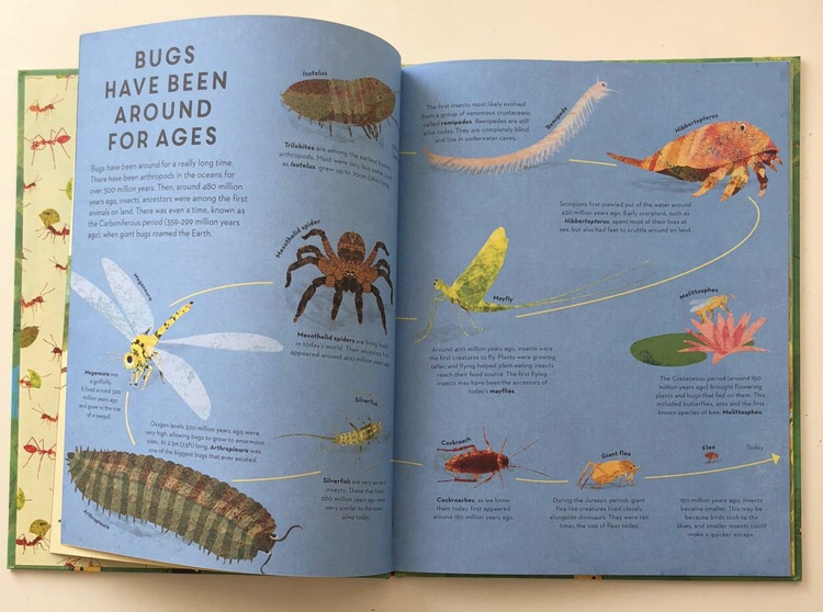 There are bugs everywhere non fiction book review MammaFilz.com