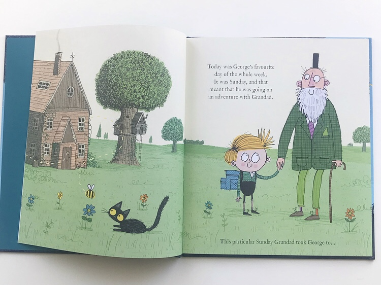 THe bug Collector book review