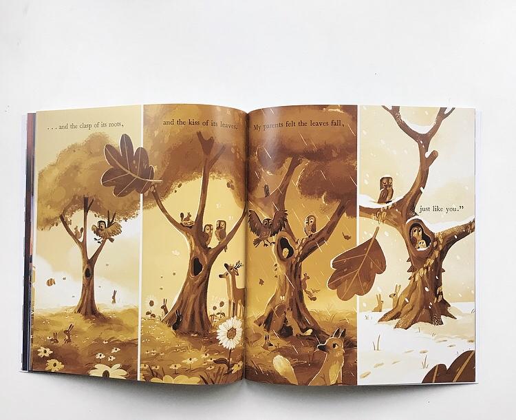 The Wonder tree book review on mammafilz.com
