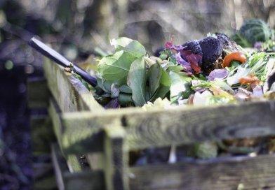 Compost fai da te: come realizzarlo in casa?