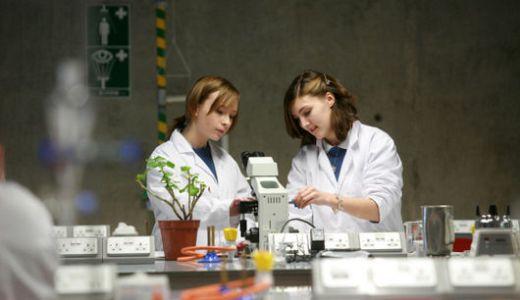 ぜひともやってみたい高校生物実験リスト