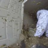 物置小屋に作られた巨大なハチの巣をおっさんがもくもくと破壊していく映像