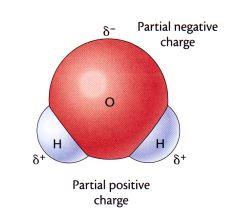 極性分子・無極性分子