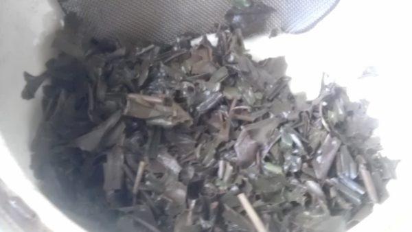 塚本製茶20130809 母子産紅茶2012 -茶殻
