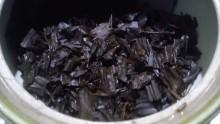 国産紅茶20130924秘密3