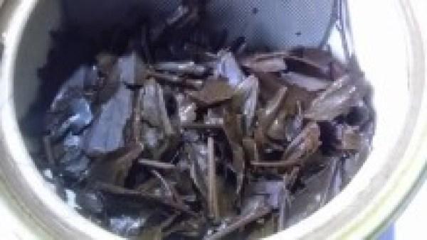 国産紅茶20131020 豊好園紅茶山の息吹 -3