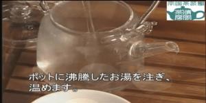 中国緑茶20140801-2