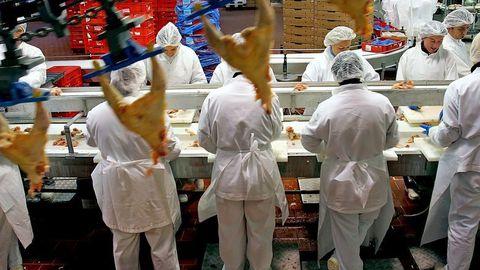 boucherie-chaine-securite-usine-accident-emploi_793829