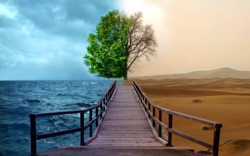 schimbari-climatice