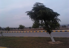 Gulberg-Residencia-Islamabad-Pictures-86