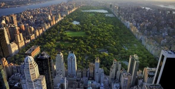 Central Park NewYork Image