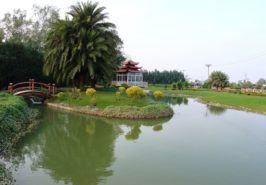 Palm City Lahore Images 7