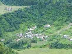 Tace Village