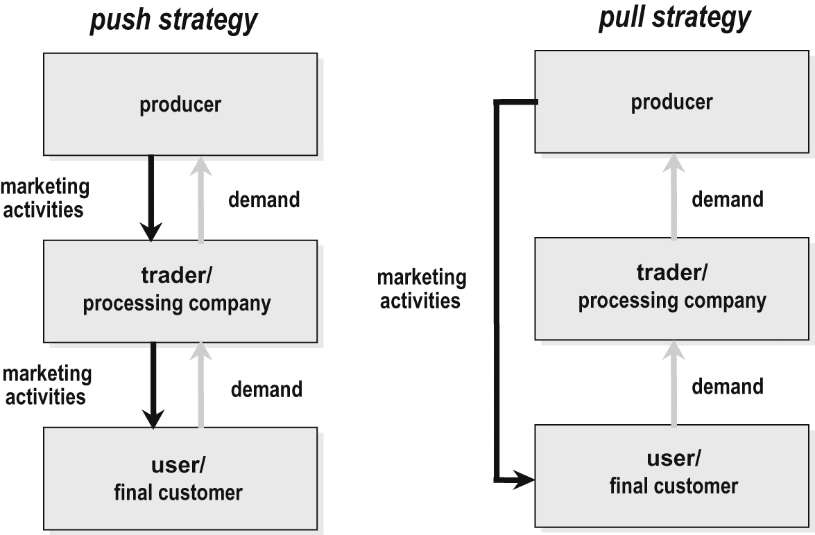 What Are The Pull And Push Marketing Strategies