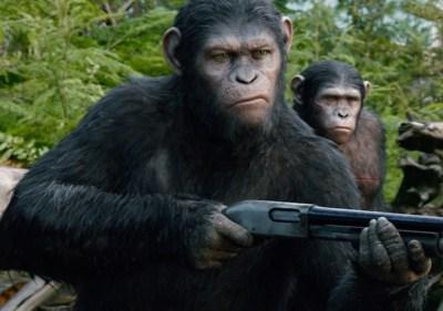 Apes Shotgun