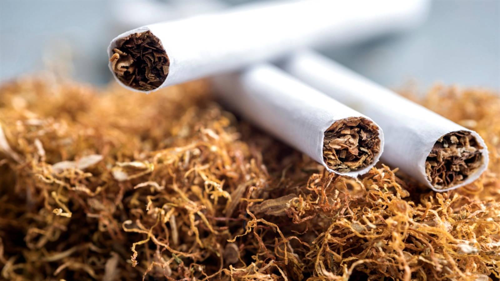 Табачные изделия кыргызстан белорусские сигареты купить в калуге оптом