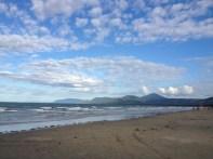 Beautiful beaches in Port Douglas