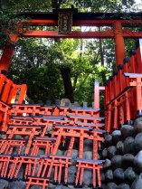 Tiny Torii used as offerings/prayers. People have written all over them, and places them in a special shrine