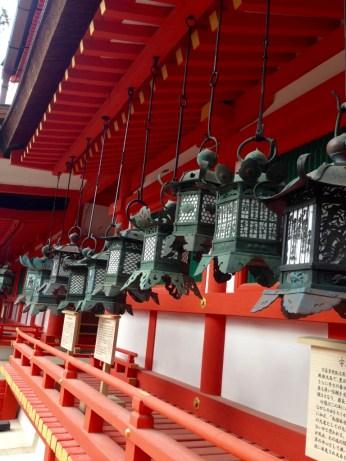 Lanterns line the complex