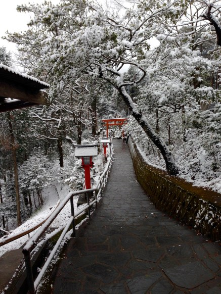 Torii in the snow