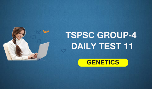 GROUP-4 DAILY TEST 11