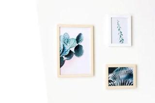 Déco murale végétale : 3 affiches à imprimer gratuites graphic