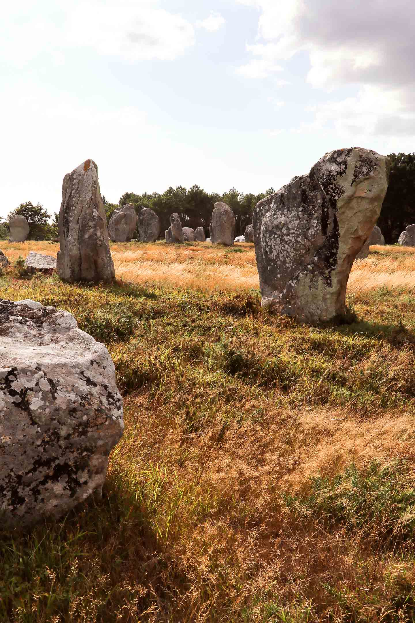 Visiter la Bretagne - alignements de Carnac