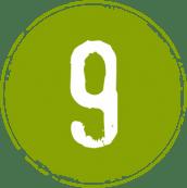 Logo9anos