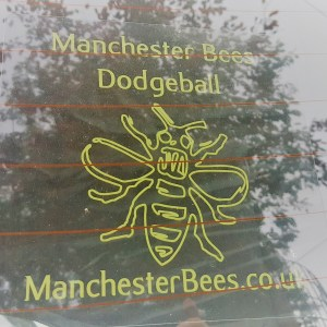 Car/Window Sticker