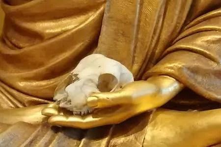 Lotus Hall Buddha with Skull