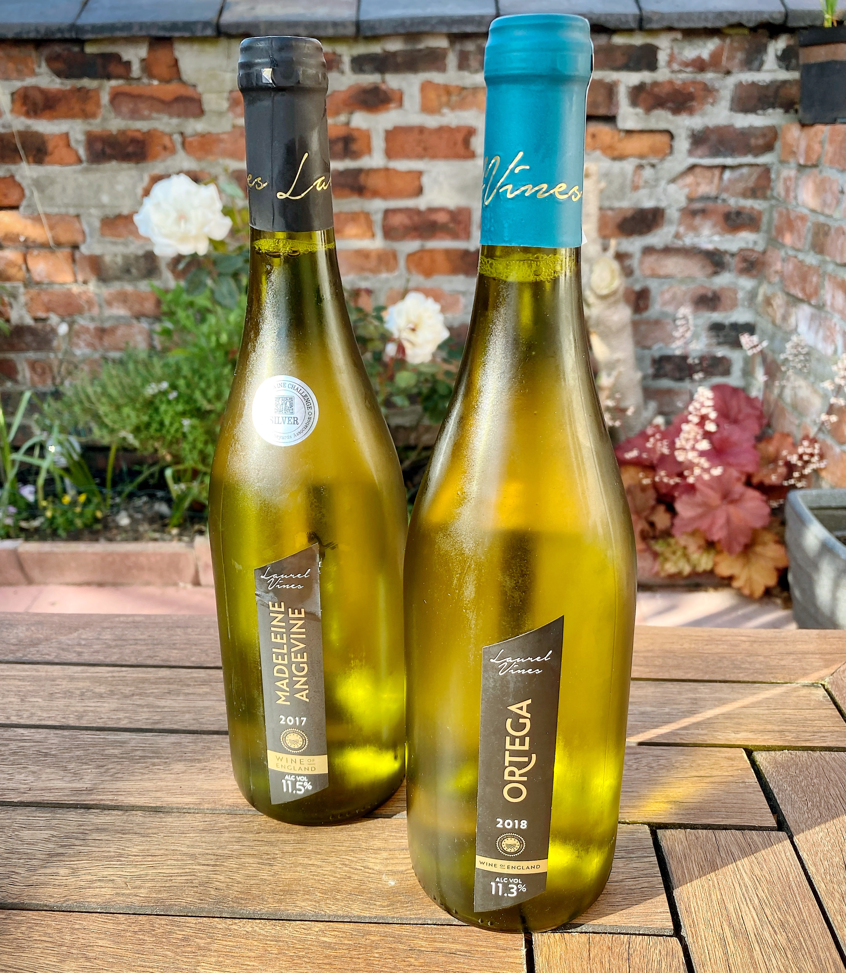 Laurel Vines – Great Wine From 'Up North'