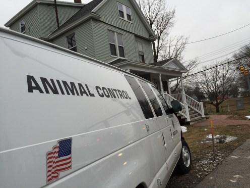 Animal Control van waits for stolen puppies.
