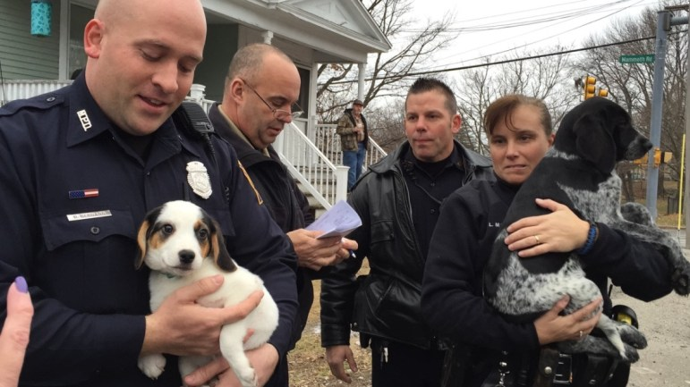 Officers load the last of the stolen pups into the animal control van.