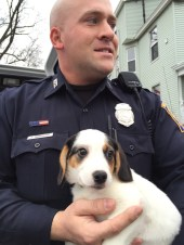 Officer Beau Bernard with puppy, one of 13 stolen from Bill's Pet & Aquarium.