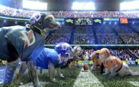 The Lucy Bowl: Cats vs. Dogs, as seen in the Anapal Times.
