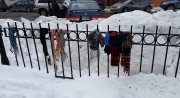 Scarves tied to a fence at Veterans Park.