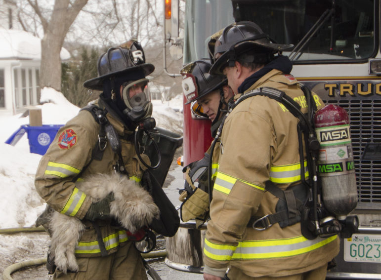 Manchester firefighters rescued a small dog from a Mitchell Street fire.